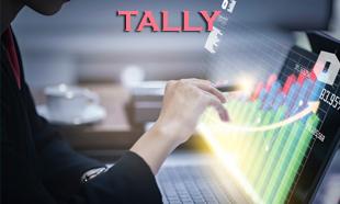 TECHINAUT-TALLY-010