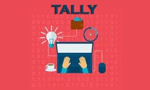 TECHINAUT-TALLY-014